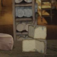 Asturian Cheese